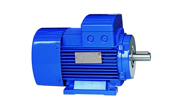 YE2 标准电机